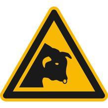 Warnschild - Warnung vor Stier