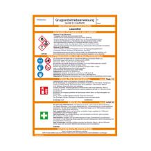 Gefahrstoff - Gruppenbetriebsanweisung - Lösemittel
